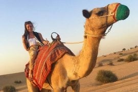 Camel trekking through the desert
